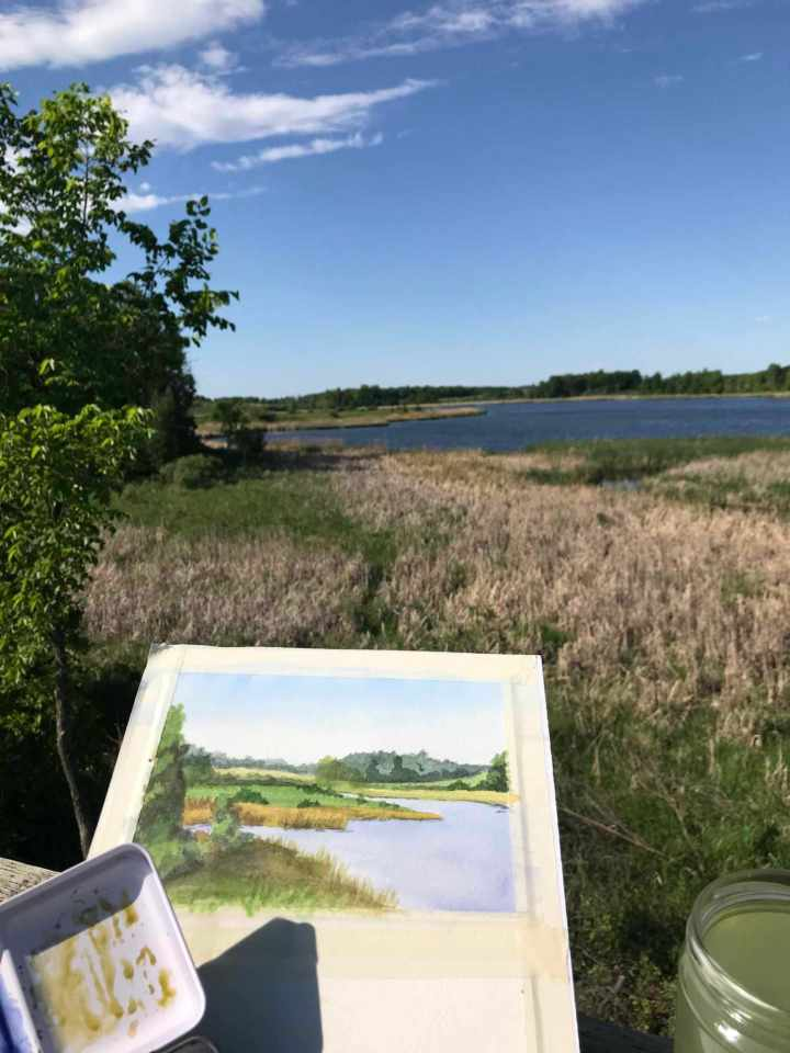 Photo of wetlands at Lake Carlos State Park and plein air watercolor painting.
